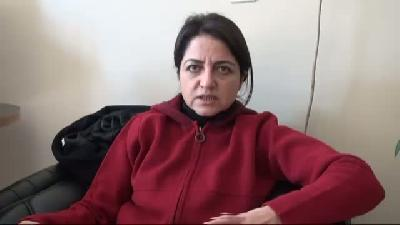 Ak Parti Van Milletvekili Gülşen Orhan: