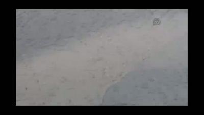 Eleşkirt'te yağmur hayatı olumsuz etkiledi - AĞRI