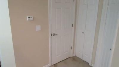 Kapıları açma ustası kedi