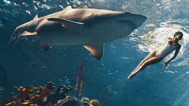 Rihanna vahşi köpek balığıyla aynı suda
