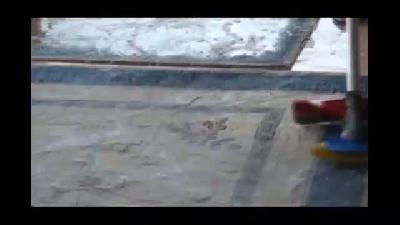 Tırpan motoruyla halı yıkama