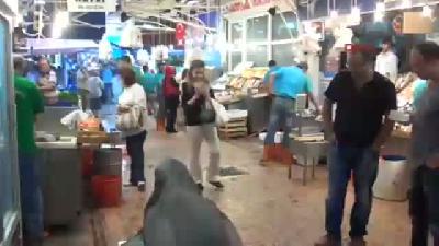 Dev Köpek Balığı Görenleri Şaşırttı