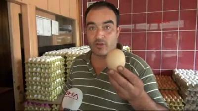 146 Gramlık Tavuk Yumurtası Şaşırttı