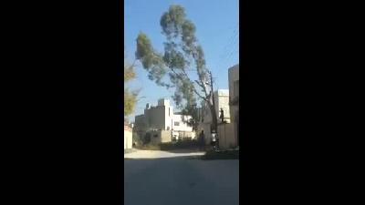 Ağacı Keseceğim Derken Mahalleyi Elektriksiz Bırakmak