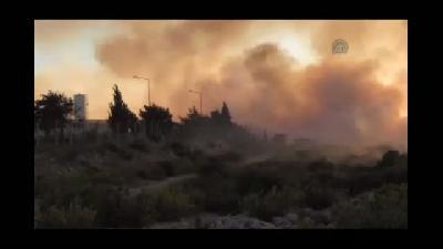 Didim'de 300 dekar alan yandı - AYDIN