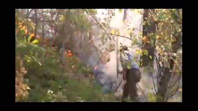 Çıkan yangında 7'den 70'e tüm ilçe halkı yardıma koştu - HAKKARİ
