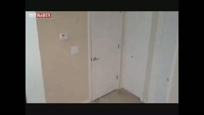 Kapı açan kedi