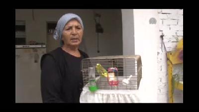 Dedektif gibi çalıştı, çalınan kuşunu buldu - ADANA