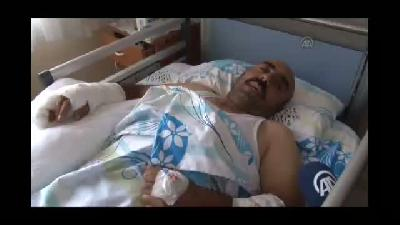 Kurt saldırısına uğrayan 4 kişi yaralandı - SİVAS